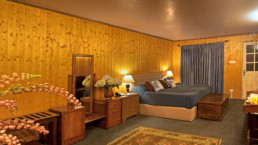Executive Room Nedous